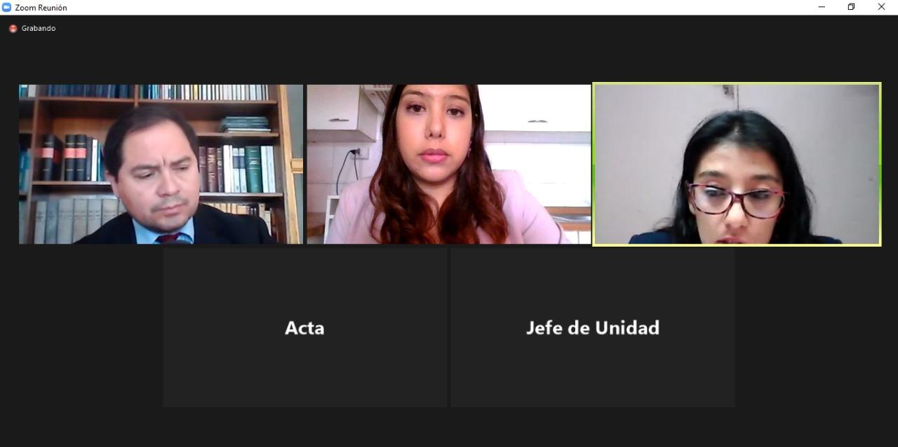 Consultorio Jurídico Móvil de Mejillones compareció por videoconferencia a audiencia de familia